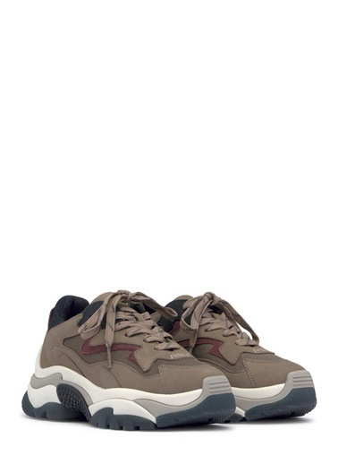 Ash Sneakers Bej